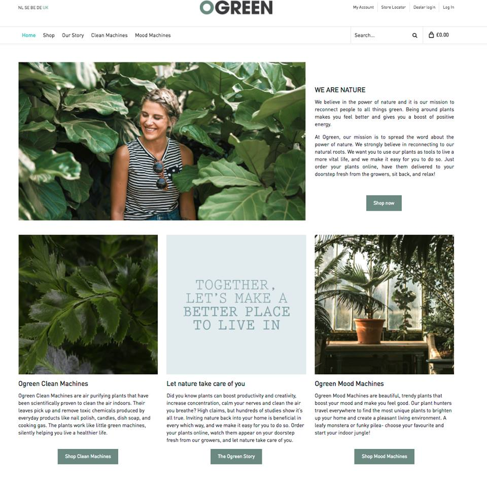 Ogreen Web Copy