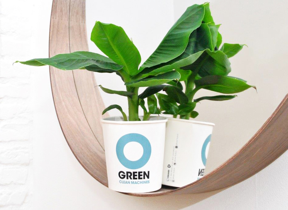 Ogreen plants